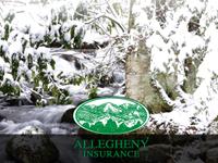 Allegheny Insurance eCard